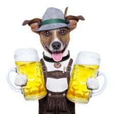 dog with beer2
