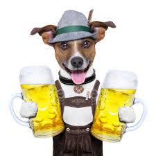 dog with beer4