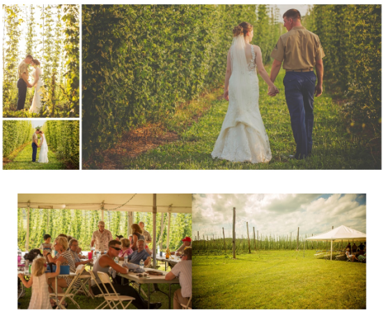 The Hop Garden - Hop Yard Events